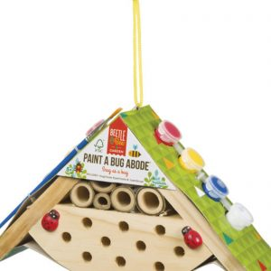 Toysmith paint a bug abode